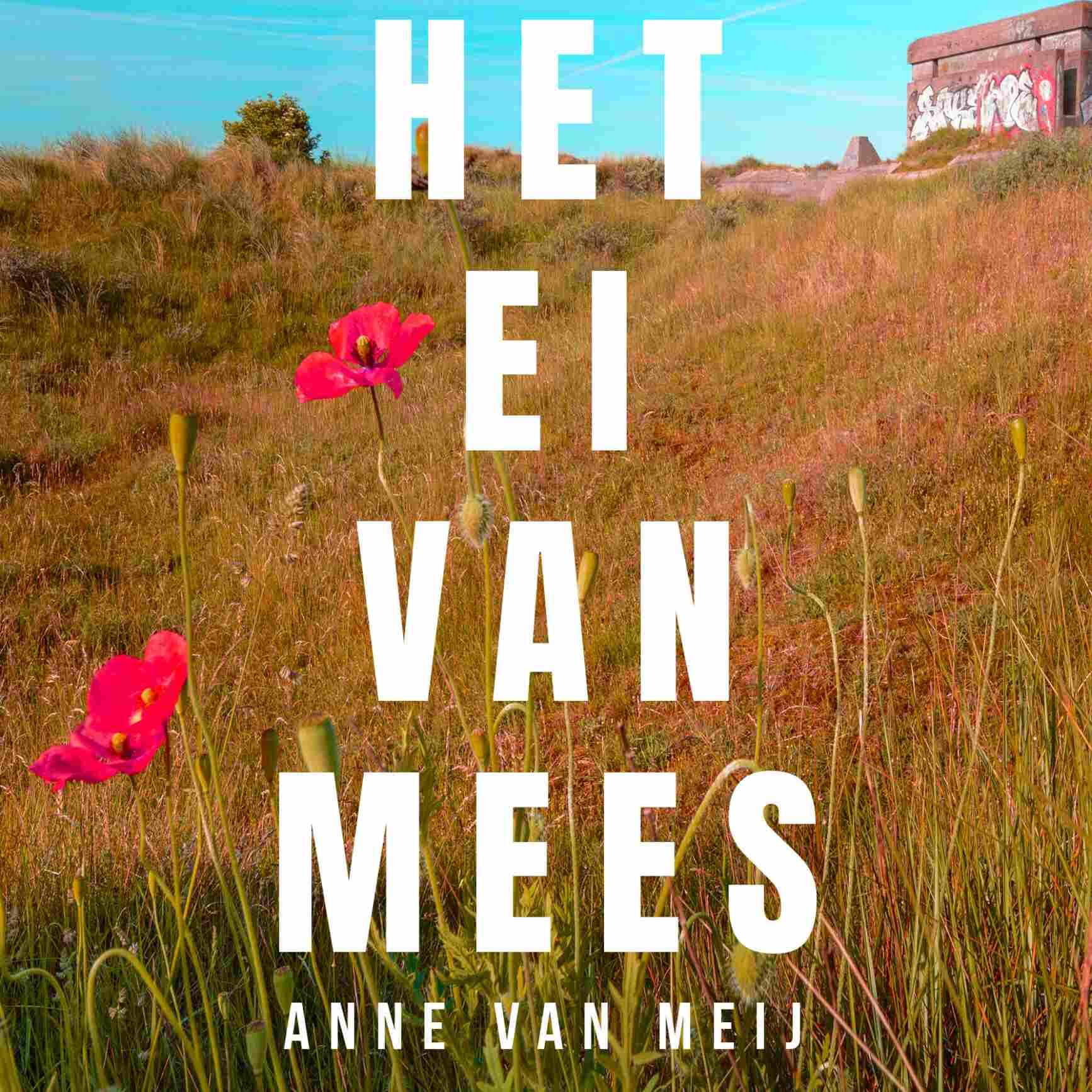 Anne-van-Meij-Het-Ei-van-Mees_icon